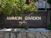 kasandra-pefkohori-ammon-garden10-22
