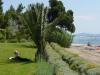 halkidiki-nikiti-hotel-lily-ann-beach-16