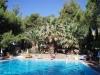 halkidiki-atos-hotel-porfi-beach-10