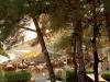 tasos-potos-hotel-alexandra-beach-45