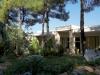 tasos-potos-hotel-alexandra-beach-49