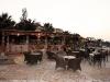 krit-hotel-eri-beach-village-1-3