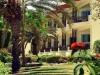 festtival-shedwan-golden-beach-resort-11