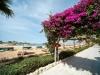 festtival-shedwan-golden-beach-resort-12