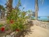 festtival-shedwan-golden-beach-resort-20