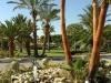 hotel-palm-beach-bungalows-kipar-23