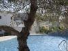 grcka-rodos-kolimpia-hoteli-sentido-port-royal-6
