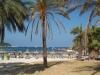 majorka-hotel-globales-playa-santa-ponsa-28