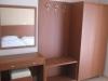 lakis-2010-029