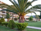 Messonghi-Beach-Hotel-2