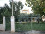 Aparthotel Mary 2, Tasos - Skala Sotiros