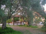 Vila Vergina, Pefkohori