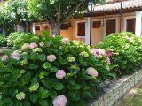 Vila Alexandra, Krf - Dasia