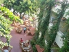 alanja-hotel-gorgulu-kleopatra-beach-hotel-11