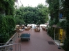 alanja-hotel-gorgulu-kleopatra-beach-hotel-12