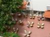 alanja-hotel-gorgulu-kleopatra-beach-hotel-21