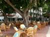 alanja-hotel-gorgulu-kleopatra-beach-hotel-23