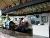 alanja-hotel-gorgulu-kleopatra-beach-hotel-6