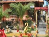 Kuća Renia, Sarti