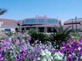 Parrotel Beach Resort, Šarm El Šeik - Nabq Bay